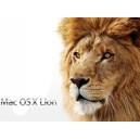 OS-X Lion Install Service